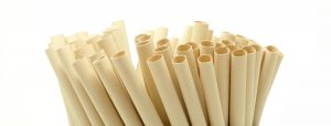 10 Bamboo Straws